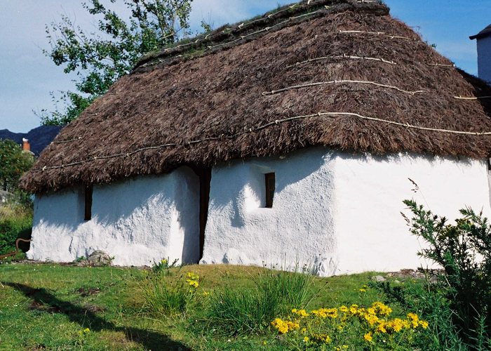 Thatched cottage in the village